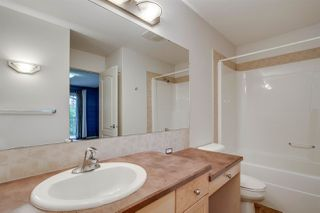 Photo 16:  in Edmonton: Zone 30 Carriage for sale : MLS®# E4173427