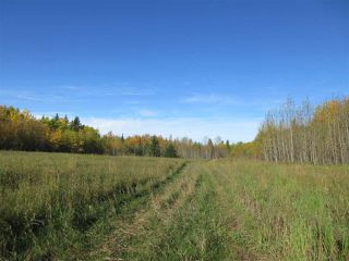 Photo 7: RR 214 Twp Rd 624: Rural Thorhild County Rural Land/Vacant Lot for sale : MLS®# E4174610