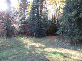 Photo 13: RR 214 Twp Rd 624: Rural Thorhild County Rural Land/Vacant Lot for sale : MLS®# E4174610