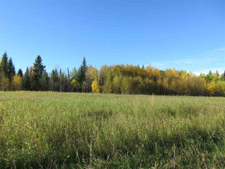 Photo 8: RR 214 Twp Rd 624: Rural Thorhild County Rural Land/Vacant Lot for sale : MLS®# E4174610