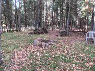 Photo 26: RR 214 Twp Rd 624: Rural Thorhild County Rural Land/Vacant Lot for sale : MLS®# E4174610