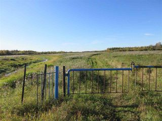 Photo 3: RR 214 Twp Rd 624: Rural Thorhild County Rural Land/Vacant Lot for sale : MLS®# E4174610