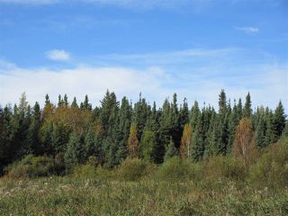 Photo 29: RR 214 Twp Rd 624: Rural Thorhild County Rural Land/Vacant Lot for sale : MLS®# E4174610