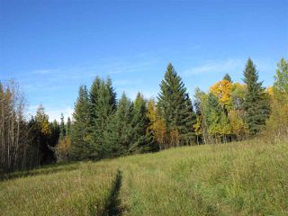 Photo 10: RR 214 Twp Rd 624: Rural Thorhild County Rural Land/Vacant Lot for sale : MLS®# E4174610