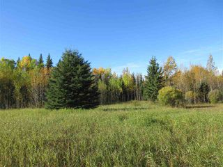 Photo 9: RR 214 Twp Rd 624: Rural Thorhild County Rural Land/Vacant Lot for sale : MLS®# E4174610