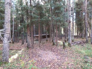 Photo 25: RR 214 Twp Rd 624: Rural Thorhild County Rural Land/Vacant Lot for sale : MLS®# E4174610