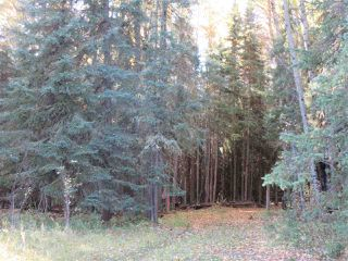 Photo 12: RR 214 Twp Rd 624: Rural Thorhild County Rural Land/Vacant Lot for sale : MLS®# E4174610