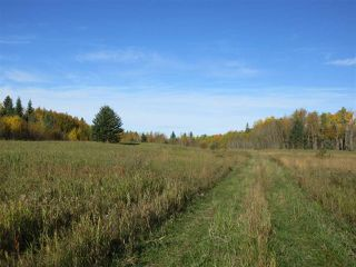 Photo 4: RR 214 Twp Rd 624: Rural Thorhild County Rural Land/Vacant Lot for sale : MLS®# E4174610