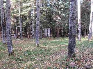 Photo 22: RR 214 Twp Rd 624: Rural Thorhild County Rural Land/Vacant Lot for sale : MLS®# E4174610