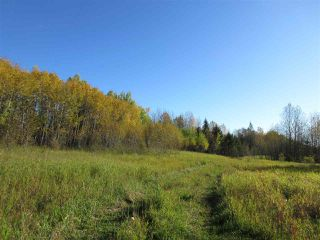 Photo 28: RR 214 Twp Rd 624: Rural Thorhild County Rural Land/Vacant Lot for sale : MLS®# E4174610