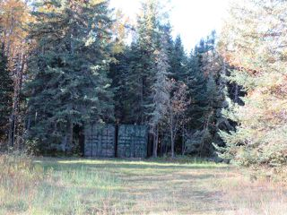 Photo 11: RR 214 Twp Rd 624: Rural Thorhild County Rural Land/Vacant Lot for sale : MLS®# E4174610