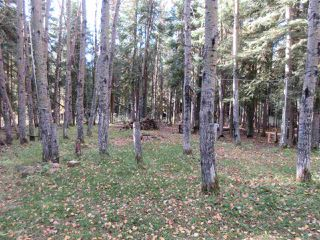 Photo 24: RR 214 Twp Rd 624: Rural Thorhild County Rural Land/Vacant Lot for sale : MLS®# E4174610
