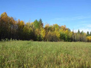 Photo 5: RR 214 Twp Rd 624: Rural Thorhild County Rural Land/Vacant Lot for sale : MLS®# E4174610