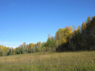 Photo 6: RR 214 Twp Rd 624: Rural Thorhild County Rural Land/Vacant Lot for sale : MLS®# E4174610