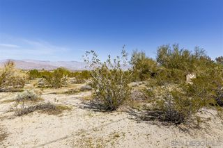 Photo 10: BORREGO SPRINGS House for sale : 3 bedrooms : 3818 Ynez Path