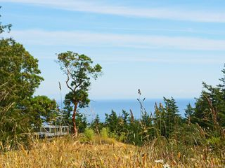 Photo 23: 5046 Rocky Point Rd in Metchosin: Me Rocky Point Single Family Detached for sale : MLS®# 842650
