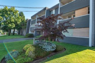 Photo 1: 105 377 Dogwood St in : CR Campbell River Central Condo for sale (Campbell River)  : MLS®# 850368