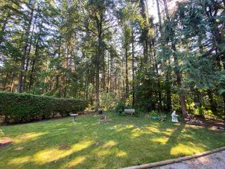 """Photo 24: 19 2306 198 Street in Langley: Brookswood Langley Manufactured Home for sale in """"CEDAR LANE SENIORS PARK"""" : MLS®# R2497884"""