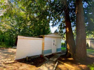 """Photo 31: 19 2306 198 Street in Langley: Brookswood Langley Manufactured Home for sale in """"CEDAR LANE SENIORS PARK"""" : MLS®# R2497884"""