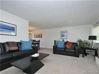 Photo 3: 4021 Oberlin Pl in VICTORIA: SE Gordon Head House for sale (Saanich East)  : MLS®# 648108