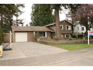 Main Photo: 3524 197A ST in Langley: Brookswood Langley House for sale : MLS®# F1434964