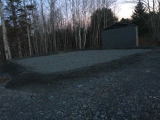 Main Photo: Williams Road in Ellershouse: 403-Hants County Vacant Land for sale (Annapolis Valley)  : MLS®# 201926376