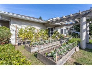 """Photo 33: 18 16016 82 Avenue in Surrey: Fleetwood Tynehead Townhouse for sale in """"Maple Court"""" : MLS®# R2497263"""