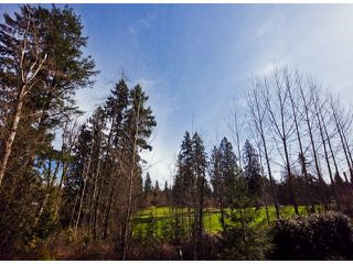 Photo 9: 21705 95 Avenue in Langley: Walnut Grove House for sale : MLS®# F1228889