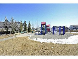 Photo 17: 223 CITADEL MESA Close NW in CALGARY: Citadel Residential Detached Single Family for sale (Calgary)  : MLS®# C3560120
