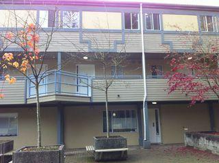 Photo 10: 16 2978 Walton Avenue in Coquitlam: Condo for sale : MLS®# V1038140