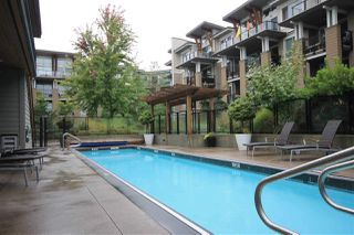 Photo 17: 207 6688 120 STREET in Surrey: West Newton Condo for sale : MLS®# R2073827
