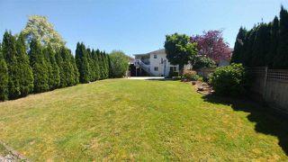 Photo 19: 11469 207 STREET in Maple Ridge: Southwest Maple Ridge House for sale : MLS®# R2174576