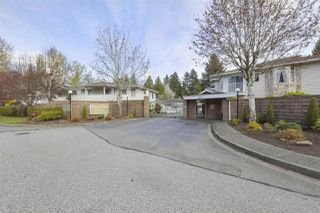 Photo 15: 224 10584 153 STREET in Surrey: Guildford Townhouse for sale (North Surrey)  : MLS®# R2360695