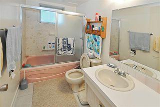 Photo 17: 10807 32 Street in Edmonton: Zone 23 House for sale : MLS®# E4184201