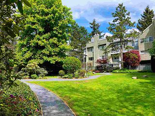 "Photo 37: 3340 MARQUETTE Crescent in Vancouver: Champlain Heights Townhouse for sale in ""CHAMPLAIN RIDGE"" (Vancouver East)  : MLS®# R2457889"