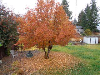 Photo 20: 656 Sicamore Drive in Kamloops: Westsyde House for sale : MLS®# 131601