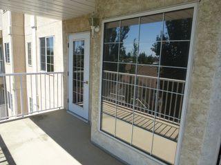 Photo 15: 350 13441 127 Street NW: Edmonton Condo for sale