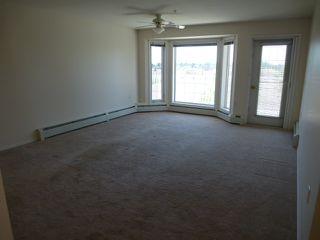 Photo 11: 350 13441 127 Street NW: Edmonton Condo for sale