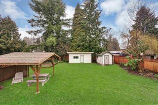"Photo 19: 21545 STONEHOUSE Avenue in Maple Ridge: West Central House for sale in ""West Maple Ridge"" : MLS®# R2440978"