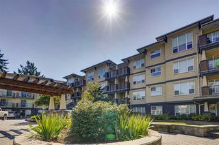 "Photo 1: 116 2565 CAMPBELL Avenue in Abbotsford: Central Abbotsford Condo for sale in ""Abacus"" : MLS®# R2487241"