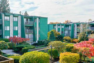 "Photo 25: 207 3901 CARRIGAN Court in Burnaby: Government Road Condo for sale in ""Lougheed Estates II"" (Burnaby North)  : MLS®# R2515286"