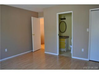 Photo 10: 546 Leaside Ave in VICTORIA: SW Glanford Single Family Detached for sale (Saanich West)  : MLS®# 651452