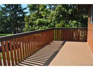 Photo 13: 546 Leaside Ave in VICTORIA: SW Glanford Single Family Detached for sale (Saanich West)  : MLS®# 651452