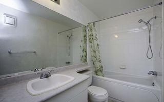 Photo 9: 204 1666 Jefferson Avenue in Winnipeg: Maples / Tyndall Park Condominium for sale (North West Winnipeg)  : MLS®# 1606236