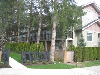 Photo 3: 16 20967 76 AVENUE in Langley: Willoughby Heights Townhouse for sale : MLS®# R2040697