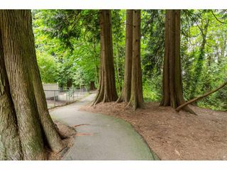 Photo 20: 10 20875 88 AVENUE in Langley: Walnut Grove Townhouse for sale : MLS®# R2089960