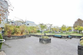 Photo 15: 203 7800 ST. ALBANS ROAD in Richmond: Brighouse South Condo for sale : MLS®# R2002172