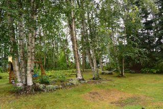 "Photo 2: 9442 POPE Road in Smithers: Smithers - Rural House for sale in ""EVELYN"" (Smithers And Area (Zone 54))  : MLS®# R2398369"