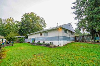 Photo 18: 22160 123 Avenue in Maple Ridge: West Central House for sale : MLS®# R2412563