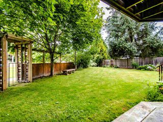 Photo 29: 5065 209 Street in Langley: Langley City House for sale : MLS®# R2483162